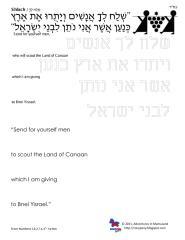 copywork parshas shlach.pdf