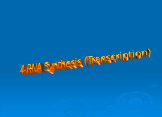 RNA Synthesis.ppt
