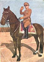 محمد رضا پهلوی -